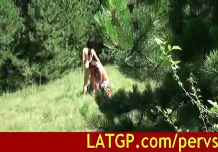 فيديو حصان ينيك امرأة