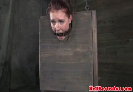 أغتصاب وتعذيب xqxx